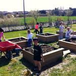 des-%c3%a9coliers-cultivent-leur-jardin