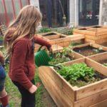 entrez-au-jardin-cest-tout-vert